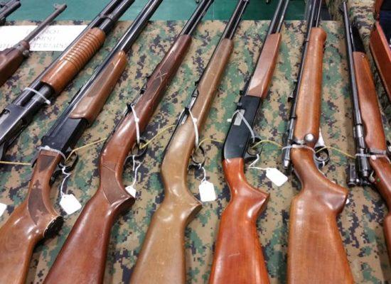 Shotguns and rifles