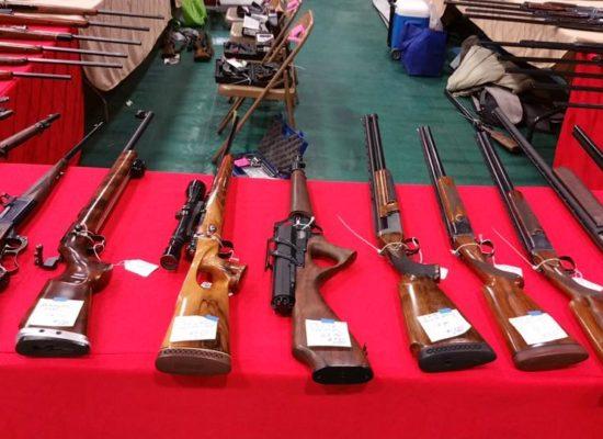 Marksman rifles